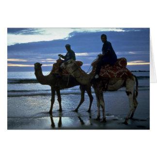 ラクダ、モロッコ カード
