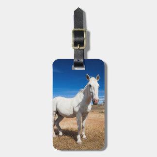 ラグナAzulの馬との景色 ラゲッジタグ