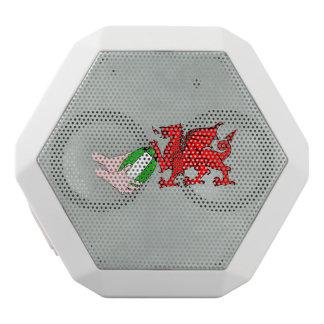 ラグビーのボールが付いているウェールズのラグビーのチームドラゴン ホワイトBluetoothスピーカー