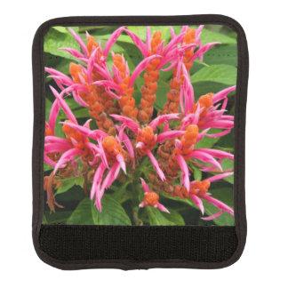 ラゲージハンドルラップ-珊瑚のAphelandra ラゲッジ ハンドルラップ