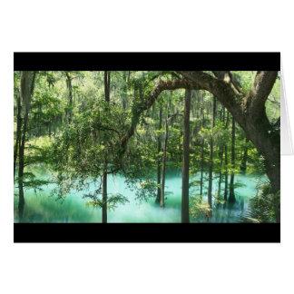 ラジウムは公園アルバニーGAはねます。 豊かな生活都市 カード
