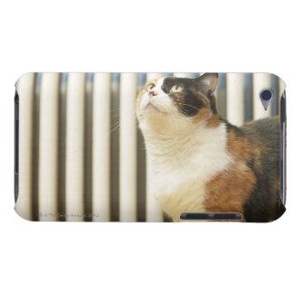 ラジエーターの隣の猫 Case-Mate iPod TOUCH ケース