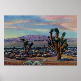 ラスベガスネバダジョシュアツリーおよび砂漠 ポスター