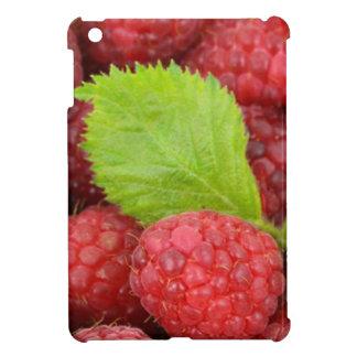 ラズベリー iPad MINIケース