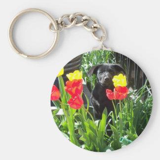 ラッカー黒いジャーマン・シェパードの子犬 キーホルダー