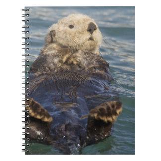 ラッコは驚きの入口で氷山で遊びます ノートブック