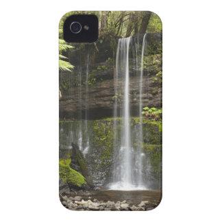 ラッセル滝、山分野の国立公園、 Case-Mate iPhone 4 ケース