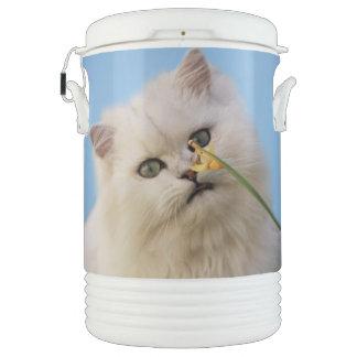 ラッパスイセンを愛している子ネコ ドリンククーラー