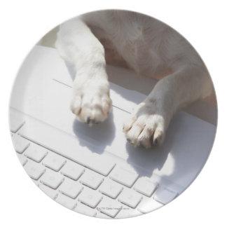 ラップトップに彼の手を置いている犬 プレート
