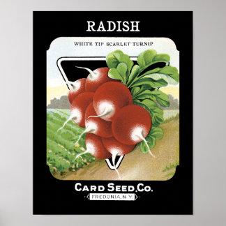 ラディッシュの種の包みのラベル ポスター