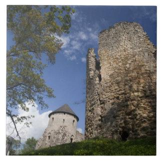 ラトビア、北東ラトビアのVidzemeの地域、 タイル