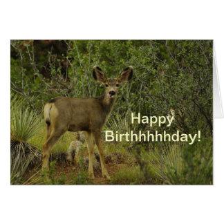 ラバシカのラズベリーの誕生日 カード