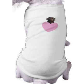 ラブラドル・レトリーバー犬のハッピーバレンタインデー ペット服