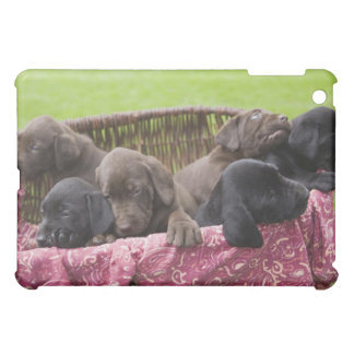 ラブラドル・レトリーバー犬の子犬のバスケット iPad MINI CASE