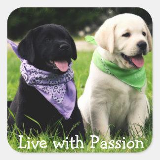 ラブラドル・レトリーバー犬の子犬は情熱のステッカーと住んでいます スクエアシール