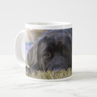 ラブラドル・レトリーバー犬の子犬 ジャンボコーヒーマグカップ