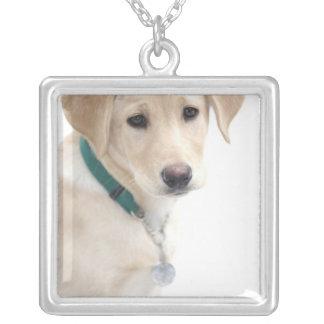 ラブラドル・レトリーバー犬の子犬、氏) シルバープレートネックレス
