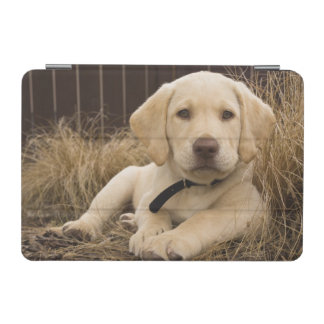 ラブラドル・レトリーバー犬の子犬 iPad MINIカバー