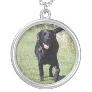 ラブラドル・レトリーバー犬の憂うつの美しい写真、ギフト シルバープレートネックレス
