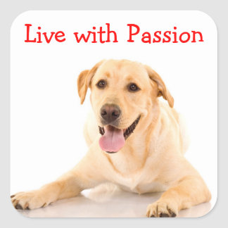 ラブラドル・レトリーバー犬犬は情熱のステッカーと住んでいます スクエアシール