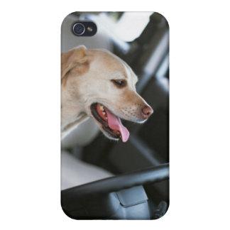 ラブラドル・レトリーバー犬 iPhone 4/4S ケース