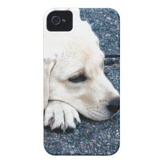 ラブラドール Case-Mate iPhone 4 ケース