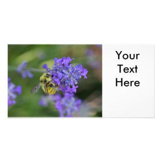 ラベンダーの写真の蜂 カード