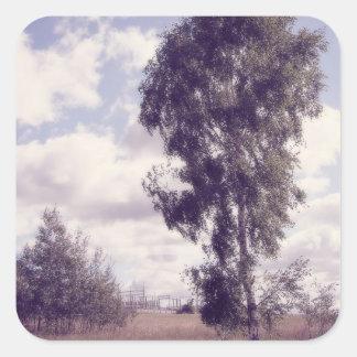ラベンダーの薄暗がり、田園自然 スクエアシール