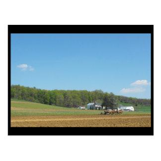 ランカスター郡の~ 84の~の春 ポストカード