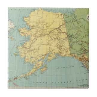 ランドのMcNallyのアラスカの地図 正方形タイル小