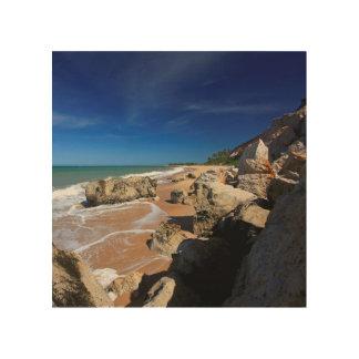 リオDa Barraビーチの崖 ウッドウォールアート