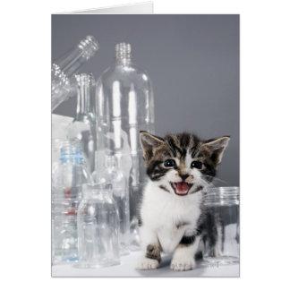 リサイクルされたボトルおよび瓶の中の子ネコ カード