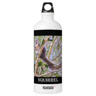 リスの灰色(ケンタッキーおよびノースカロライナ) SIGG トラベラー 1.0L ウォーターボトル