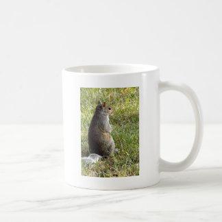 リスの黙想 コーヒーマグカップ
