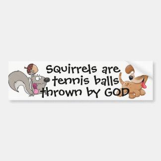 リスはテニス・ボール…です バンパーステッカー
