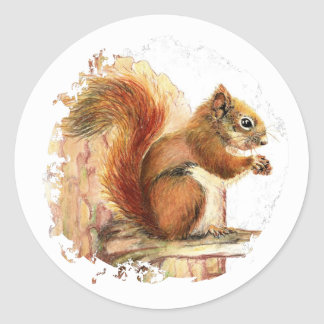 リス動物自然の野性生物、水彩画の芸術 ラウンドシール