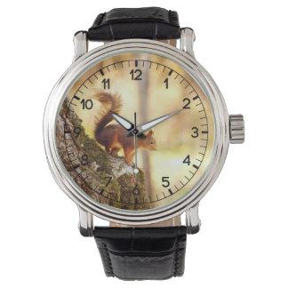 リス 腕時計