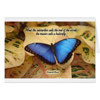 リチャードBach-Theの幼虫 カード