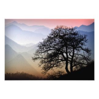 リッジの青いパークウェイからの煙山の日没 フォトプリント