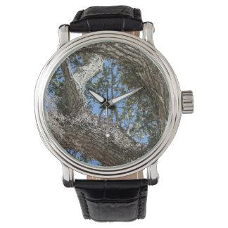 リブオークの吠え声および空は自然の写真を見ます 腕時計