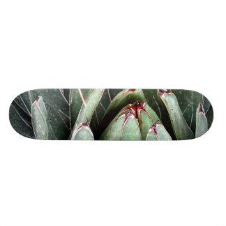 リュウゼツランのアロエのヴィエラの植物の写真のスケート スケボー