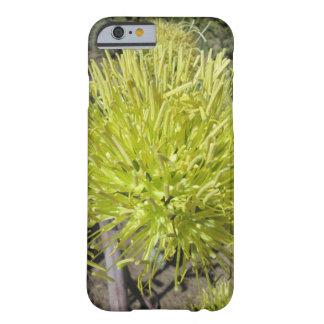 リュウゼツランの巨大な花房 BARELY THERE iPhone 6 ケース