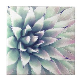 リュウゼツランの植物 タイル