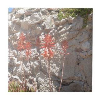 リュウゼツランの花 タイル