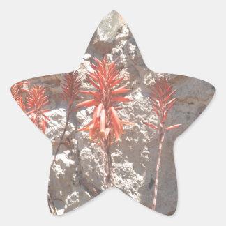 リュウゼツランの花 星シール