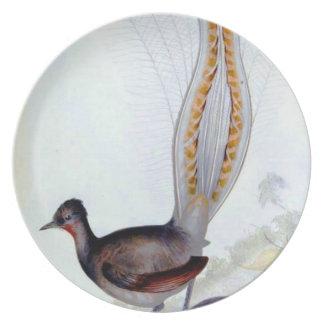 リラの鳥のヴィンテージポスタープレート プレート