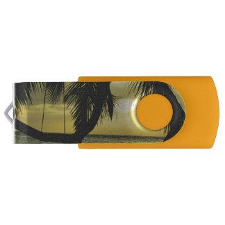 リラックスさせるでロマンチックなビーチScence USBフラッシュドライブ