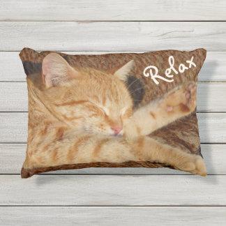 リラックスさせるな猫 アウトドアクッション