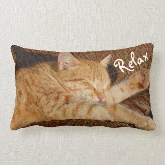 リラックスさせるな猫 ランバークッション