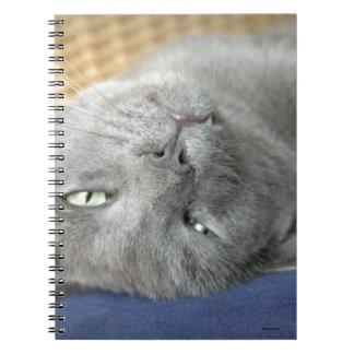 リラックスして下さい! 灰色ののどを鳴らす猫のノート ノートブック